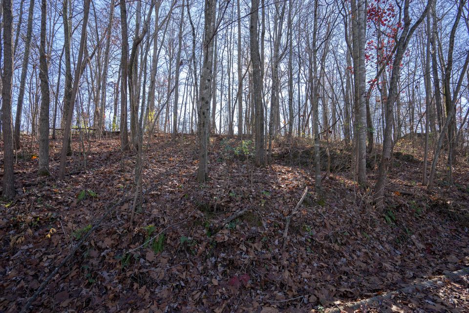 Land for Sale at 3320 Gumstand Drive Powell, Tennessee 37849 United States