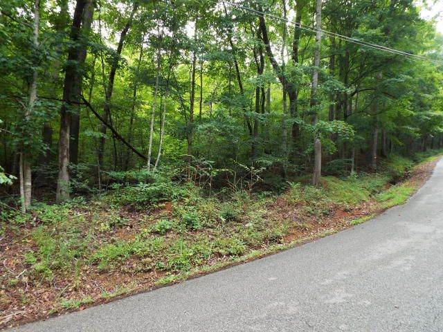 Additional photo for property listing at Hiwassee Drive Hiwassee Drive Jacksboro, Теннесси 37757 Соединенные Штаты