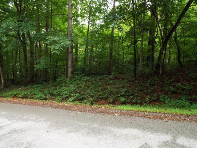 Additional photo for property listing at Hiwassee Drive Hiwassee Drive Jacksboro, 田纳西州 37757 美国
