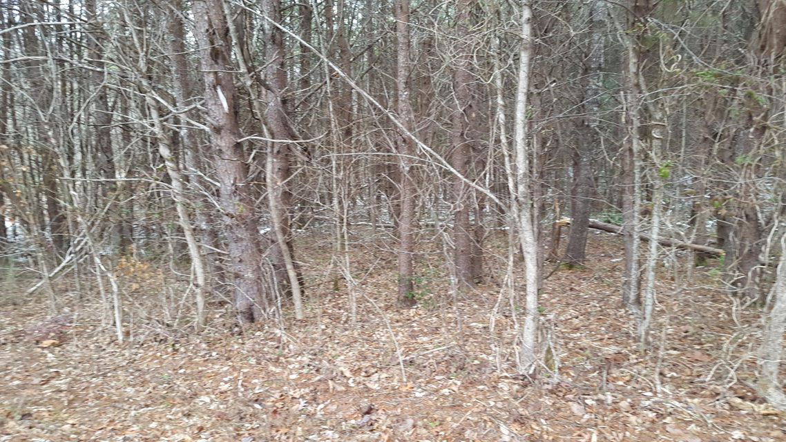 Additional photo for property listing at 108 Elohi Lane 108 Elohi Lane Loudon, Tennessee 37774 Estados Unidos