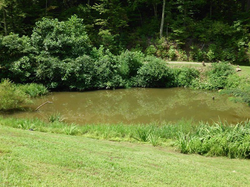 Additional photo for property listing at 686 Mt Pleasant Road  Vonore, Tennessee 37885 United States