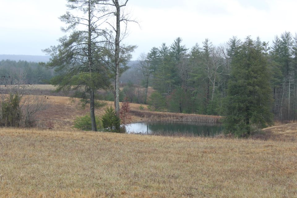 Additional photo for property listing at 4235 Nashville Hwy Hwy 4235 Nashville Hwy Hwy Deer Lodge, Tennessee 37726 États-Unis