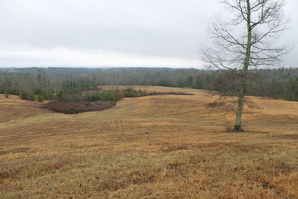 Additional photo for property listing at 4235 Nashville Hwy Hwy 4235 Nashville Hwy Hwy Deer Lodge, Теннесси 37726 Соединенные Штаты