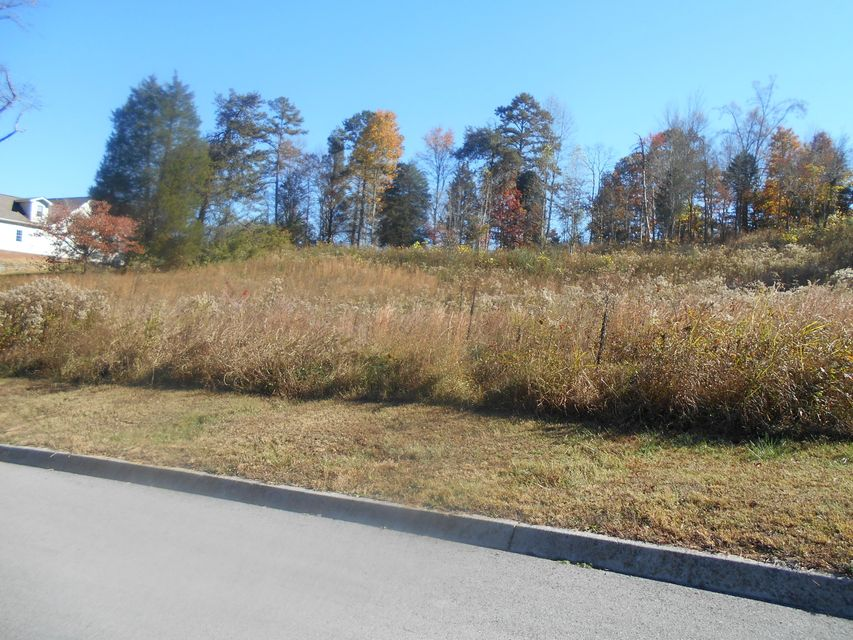 Additional photo for property listing at Briar Ridge Lane Briar Ridge Lane Strawberry Plains, Tennessee 37871 États-Unis