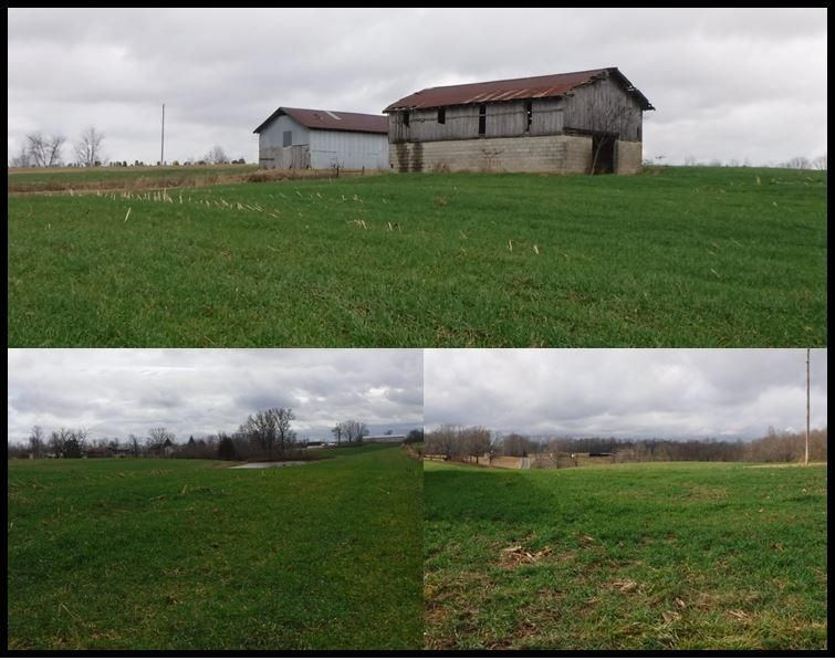 Land for Sale at 59 Ac. Bakerton Road Red Boiling Springs, Tennessee 37150 United States