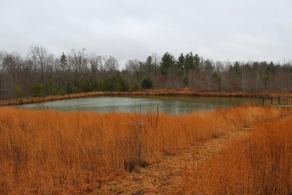 土地 为 销售 在 460 Glades Road Sunbright, 田纳西州 37872 美国