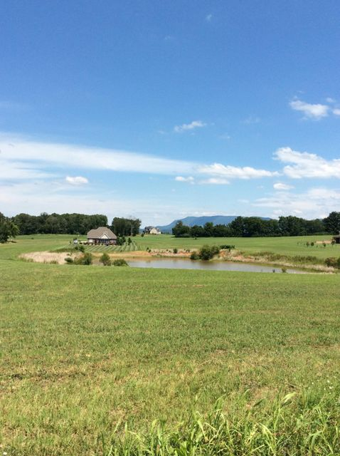 Additional photo for property listing at 622 Majestic Mtns Blvd 622 Majestic Mtns Blvd Walland, Tennessee 37886 États-Unis