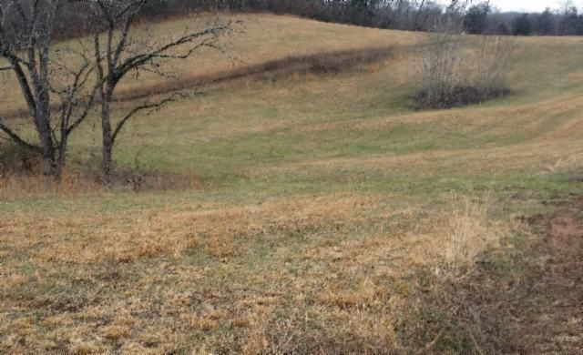 Land for Sale at .57 Ac. Cooper Drive .57 Ac. Cooper Drive Alpine, Tennessee 38543 United States