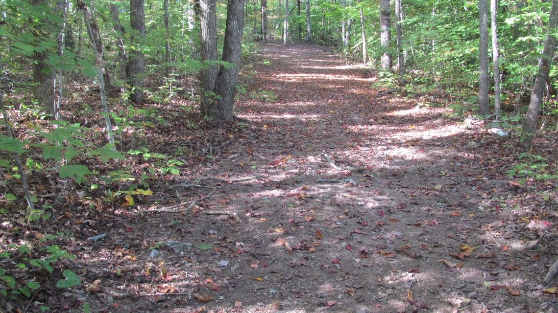 Terrain pour l Vente à Cain Road Cain Road Sharps Chapel, Tennessee 37866 États-Unis