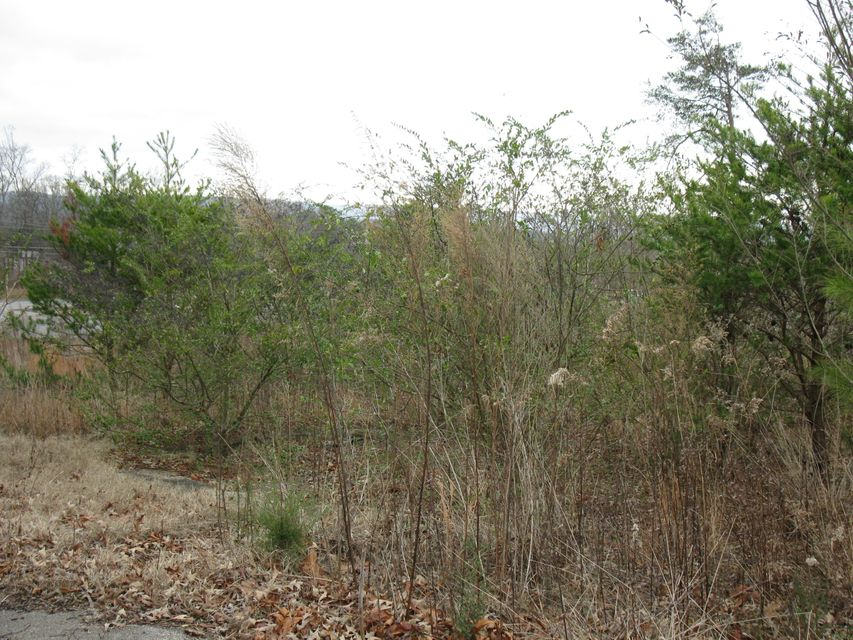 Additional photo for property listing at 593 County Road 603 593 County Road 603 Athens, Tennessee 37303 États-Unis