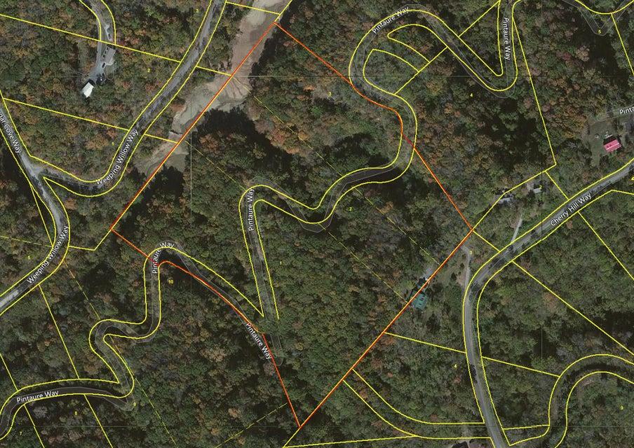 Земля для того Продажа на Pintaure Way Pintaure Way Newport, Теннесси 37821 Соединенные Штаты