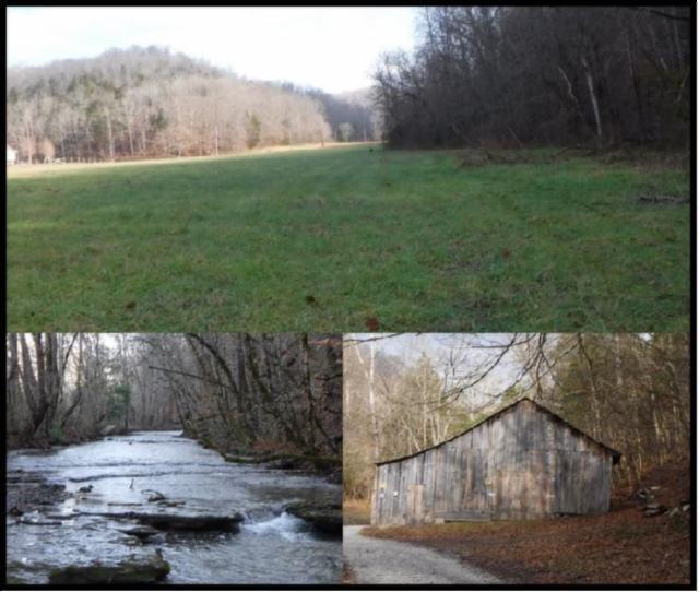 Земля для того Продажа на 161 Scott Hollow Road 161 Scott Hollow Road Celina, Теннесси 38551 Соединенные Штаты
