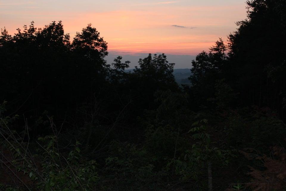 Terrain pour l Vente à Shipley Road Greeneville, Tennessee 37743 États-Unis