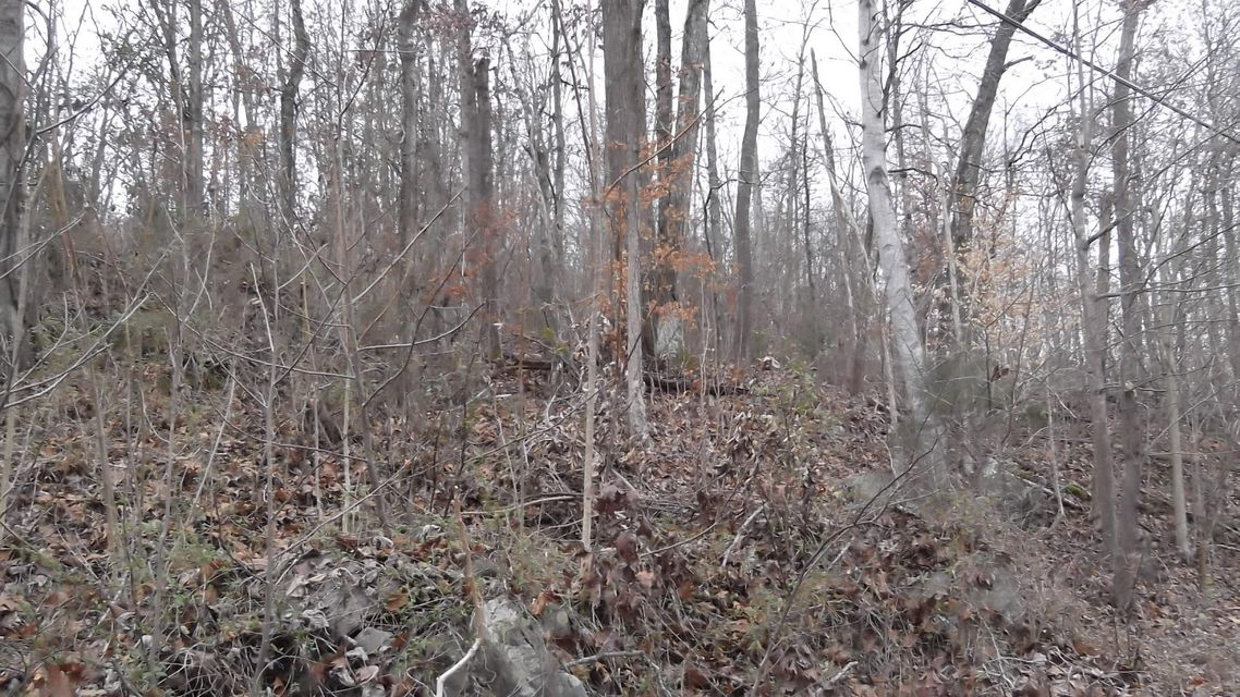 Additional photo for property listing at Highway 25/70 Highway 25/70 Dandridge, Tennessee 37725 United States