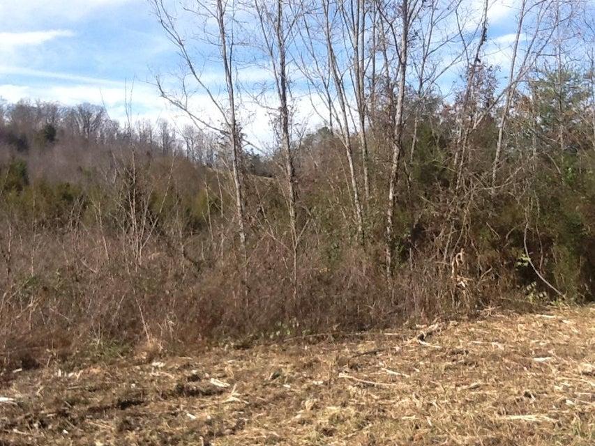 土地 为 销售 在 Dogwalk Road 格林维尔, 田纳西州 37745 美国
