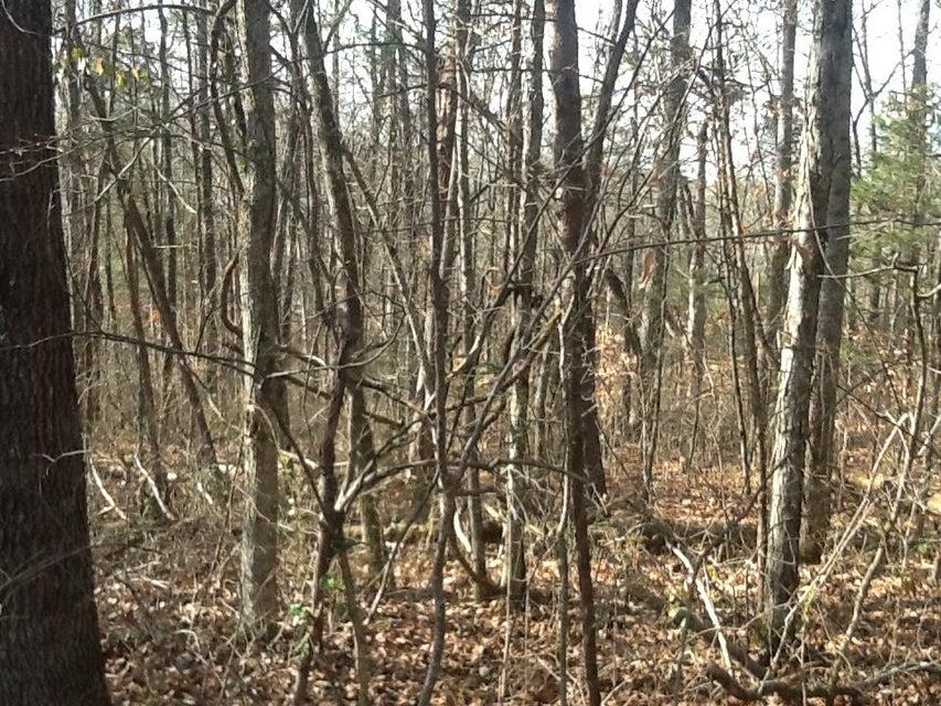 Terrain pour l Vente à Dogwalk Road Greeneville, Tennessee 37745 États-Unis