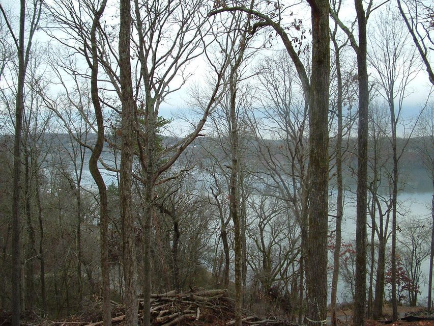 Additional photo for property listing at 1486 Bowman Bend Road Road  Harriman, Tennessee 37748 Estados Unidos