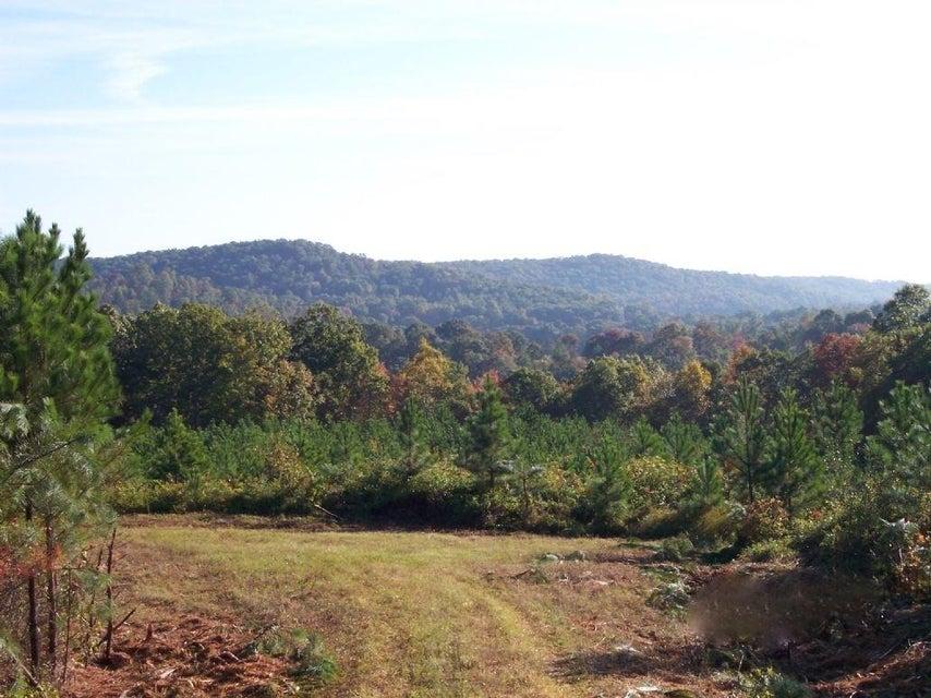 Terrain pour l Vente à Airport Road Rockwood, Tennessee 37854 États-Unis