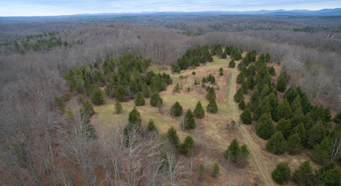 土地 为 销售 在 Coon Creek Road Sunbright, 田纳西州 37872 美国