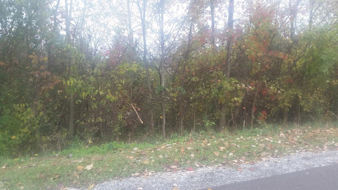Land for Sale at West Drive West Drive Parrottsville, Tennessee 37843 United States