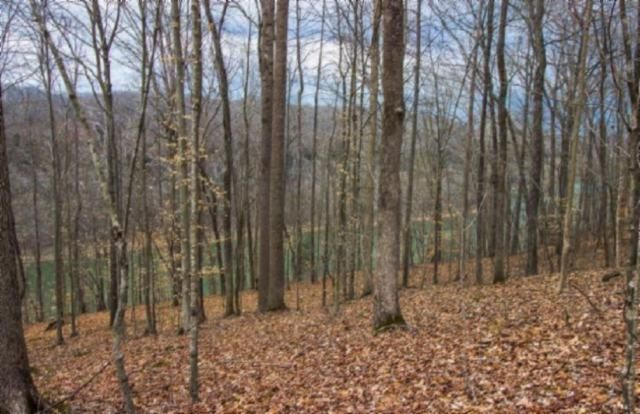 Land for Sale at 63.81 Ac. Wright Bend Road Smithville, Tennessee 37166 United States