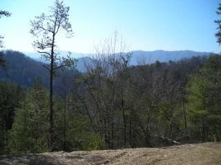 Terrain pour l Vente à 601 Cameron Road 601 Cameron Road Townsend, Tennessee 37882 États-Unis