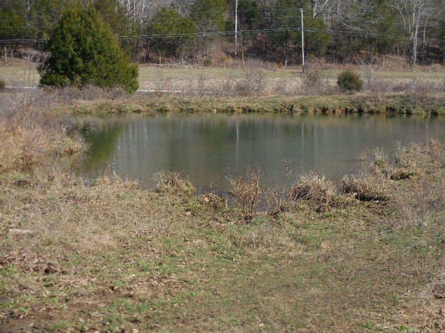 Additional photo for property listing at 127 Dean Hill 127 Dean Hill Pleasant Shade, Tennessee 37145 États-Unis