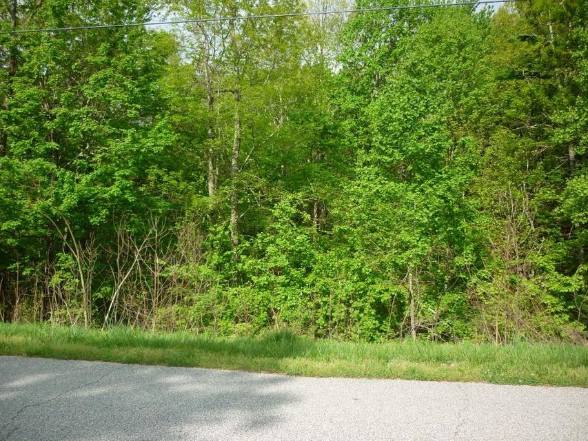 Land for Sale at Lot #462 Crystal Springs Road Lot #462 Crystal Springs Road Rockwood, Tennessee 37854 United States