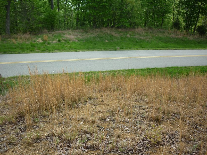 Additional photo for property listing at Lot #462 Crystal Springs Road Lot #462 Crystal Springs Road Rockwood, Tennessee 37854 United States