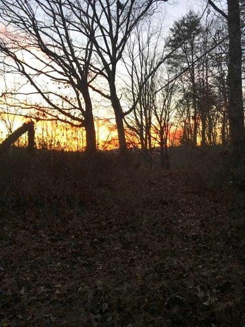 Terrain pour l Vente à 400 Miles Lane Cumberland Gap, Tennessee 37724 États-Unis
