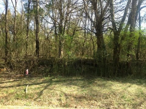 Land for Sale at 127 Dudala Way 127 Dudala Way Loudon, Tennessee 37774 United States