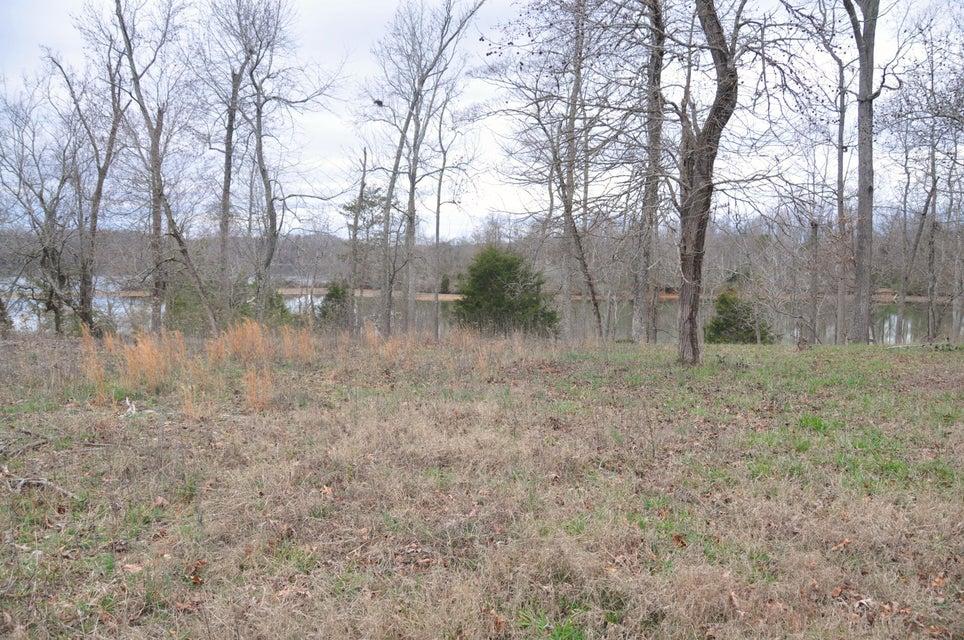 土地 为 销售 在 107 Crane Point 107 Crane Point 洛克伍德, 田纳西州 37854 美国