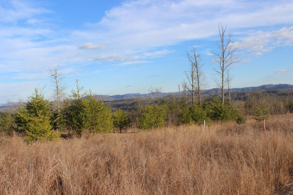 Land for Sale at Larkspur Tr Jellico, Tennessee 37762 United States