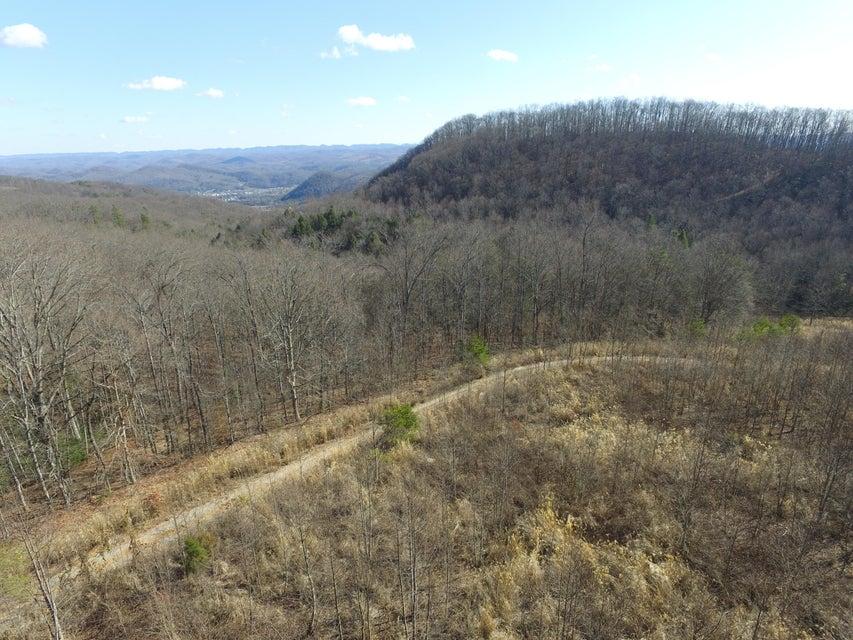 Terrain pour l Vente à 65 Acres East Short Mountain Road 65 Acres East Short Mountain Road Sneedville, Tennessee 37869 États-Unis