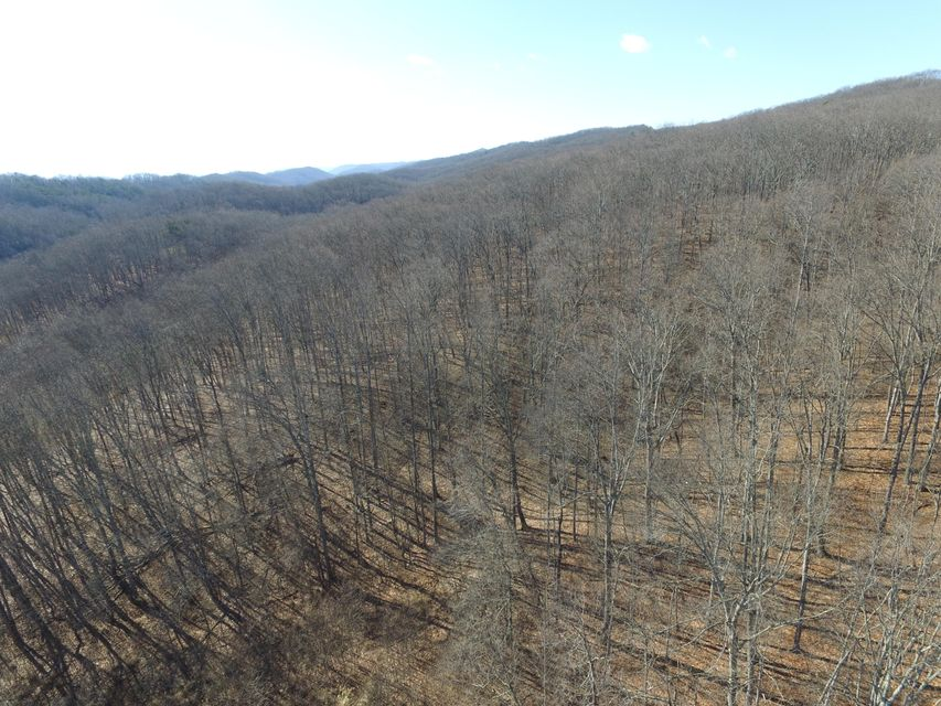 Additional photo for property listing at 65 Acres East Short Mountain Road 65 Acres East Short Mountain Road Sneedville, Tennessee 37869 États-Unis