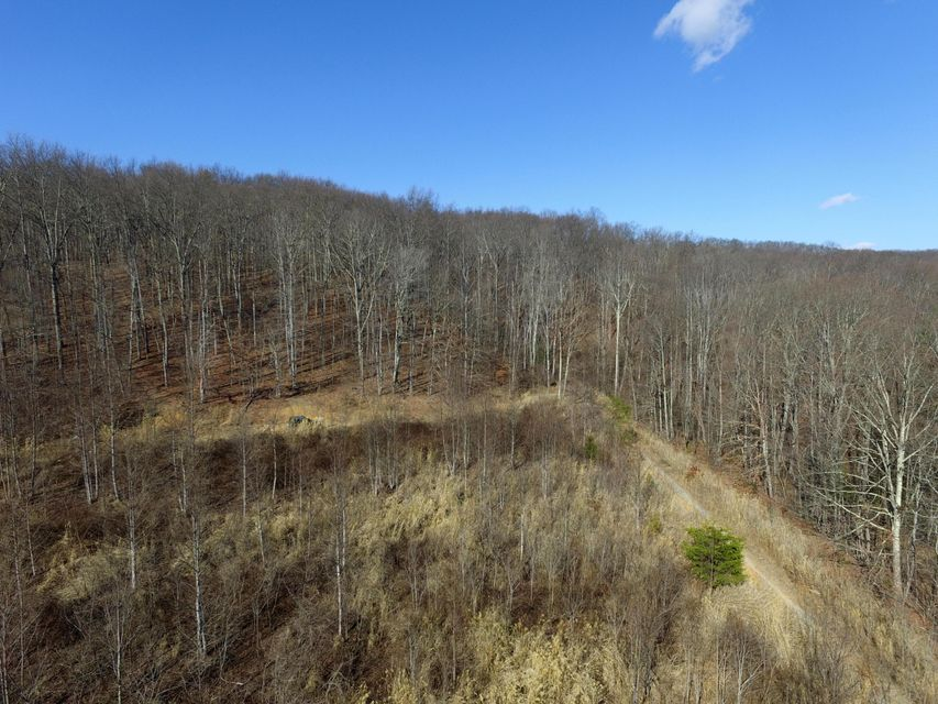 Additional photo for property listing at 65 Acres East Short Mountain Road 65 Acres East Short Mountain Road Sneedville, Теннесси 37869 Соединенные Штаты
