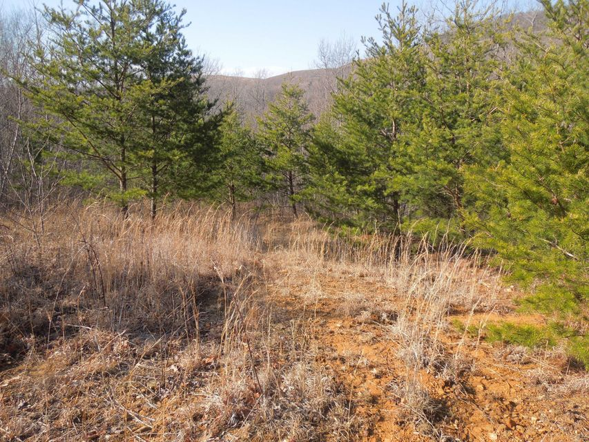 Land for Sale at Gibbs Stallion Street Miracle, Kentucky 40856 United States