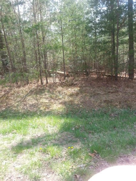 Additional photo for property listing at Renwick Drive Renwick Drive Crossville, Tennessee 38558 Estados Unidos