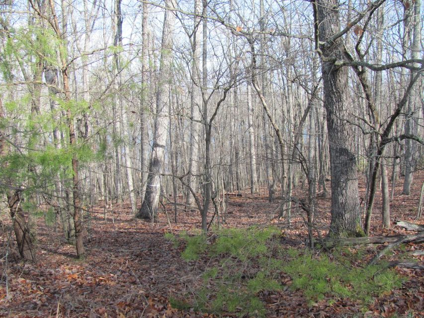 Additional photo for property listing at 43 Harley Circle 43 Harley Circle Fairfield Glade, Tennessee 38558 United States