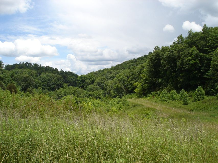Land for Sale at Liberty Hills Road Liberty Hills Road Chuckey, Tennessee 37641 United States