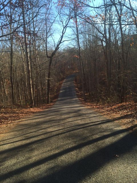 Land for Sale at Ingman Road Ingman Road Gruetli Laager, Tennessee 37339 United States