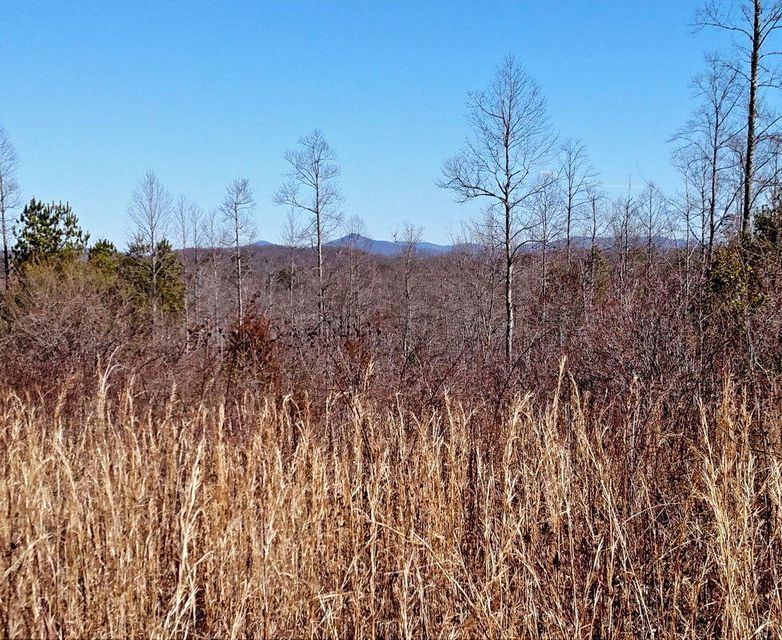 Land for Sale at 12.71ac Walnut Hill Road Lancing, Tennessee 37770 United States