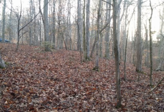 Land for Sale at .82 Ac. Rue Des Rindler Road Alpine, Tennessee 38543 United States