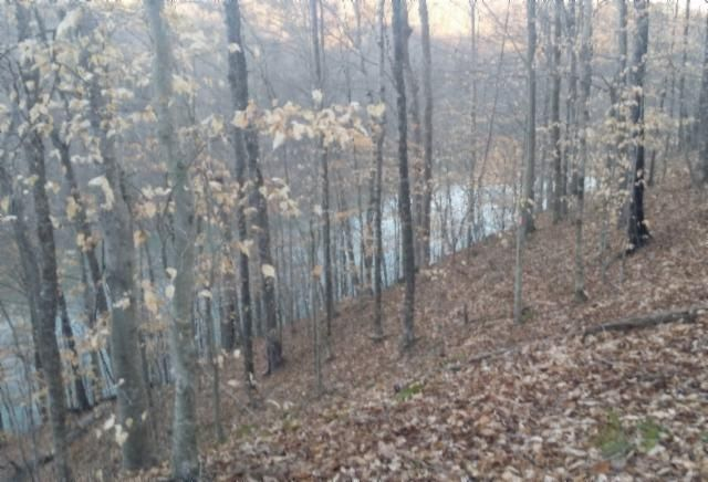 Land for Sale at .76 Ac. Rue Des Rindler Alpine, Tennessee 38543 United States