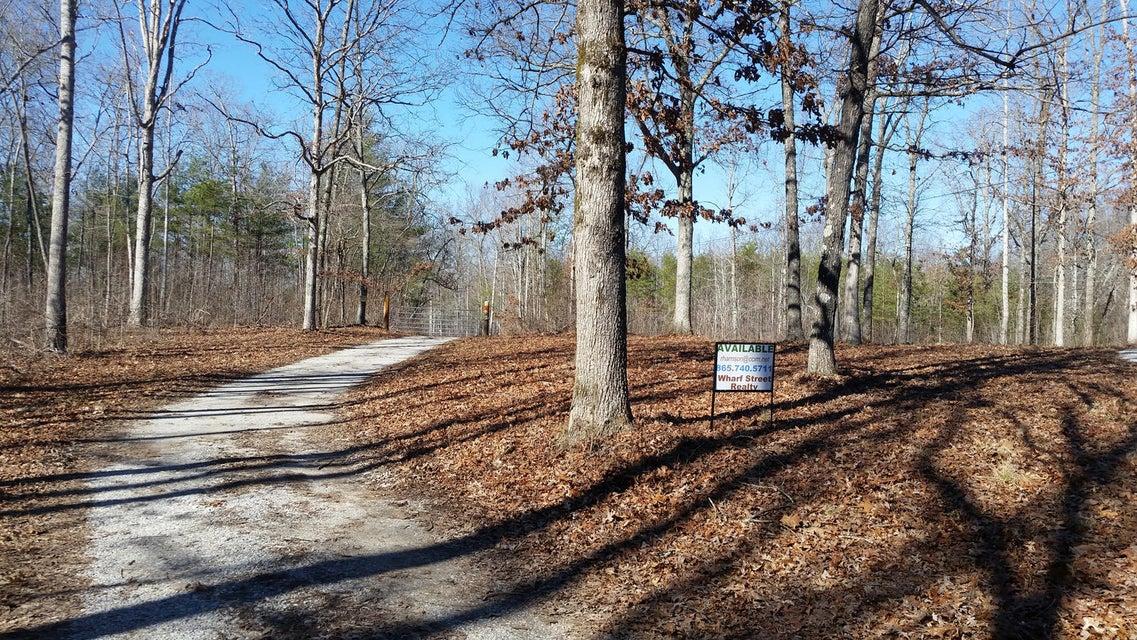土地 为 销售 在 Brock Road Sunbright, 田纳西州 37872 美国