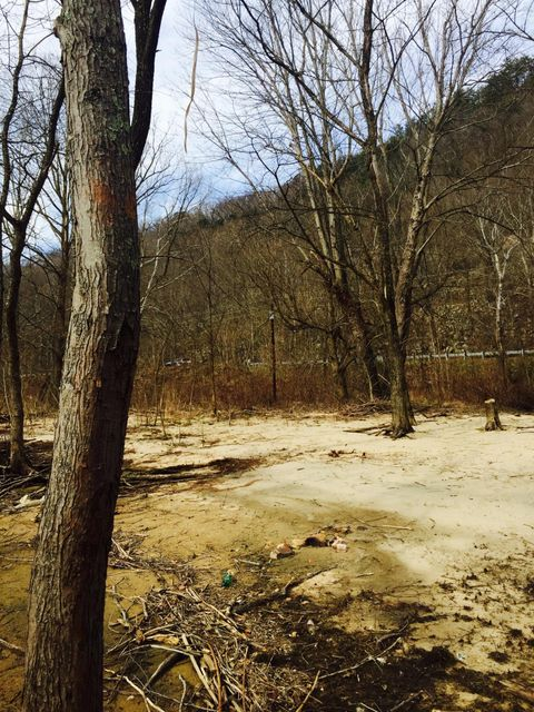 Additional photo for property listing at 2197 Hwy 25-70 2197 Hwy 25-70 Del Rio, Tennessee 37727 Estados Unidos