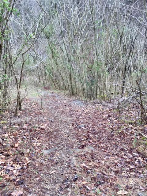 土地 为 销售 在 War Creek Road Thorn Hill, 田纳西州 37881 美国