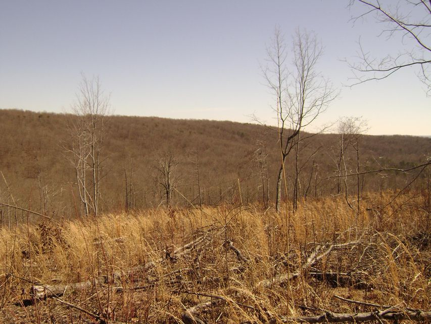 Land for Sale at Off Daus Mnt Road.County Line Road Road Dunlap, Tennessee 37327 United States