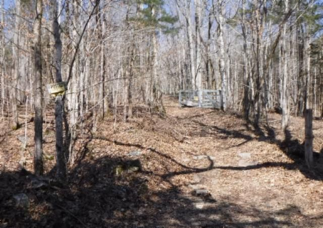 Land for Sale at 58.01 Ensor Hollow Road Granville, Tennessee 38564 United States