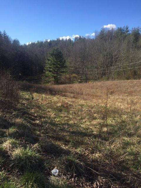 Land for Sale at 4478 Black Mtn Road Hartford, Tennessee 37753 United States